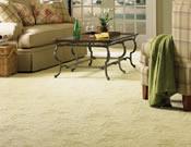 Carpet Floor Covering